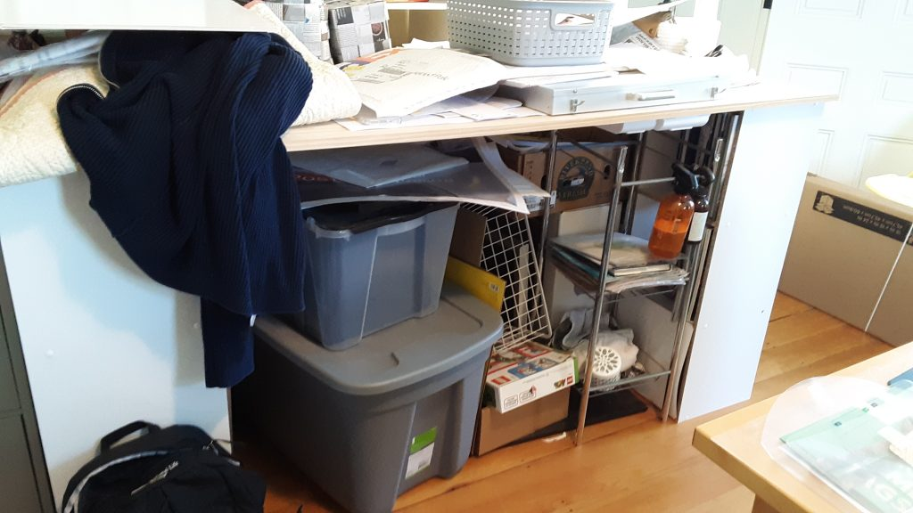 """Bins and other containers """"wanting"""" organizing!"""