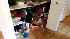 Two shelves with seemingly random food items and appliances