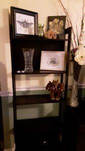 Decorative shelves' clutter cleared, now with open space ready for additional items
